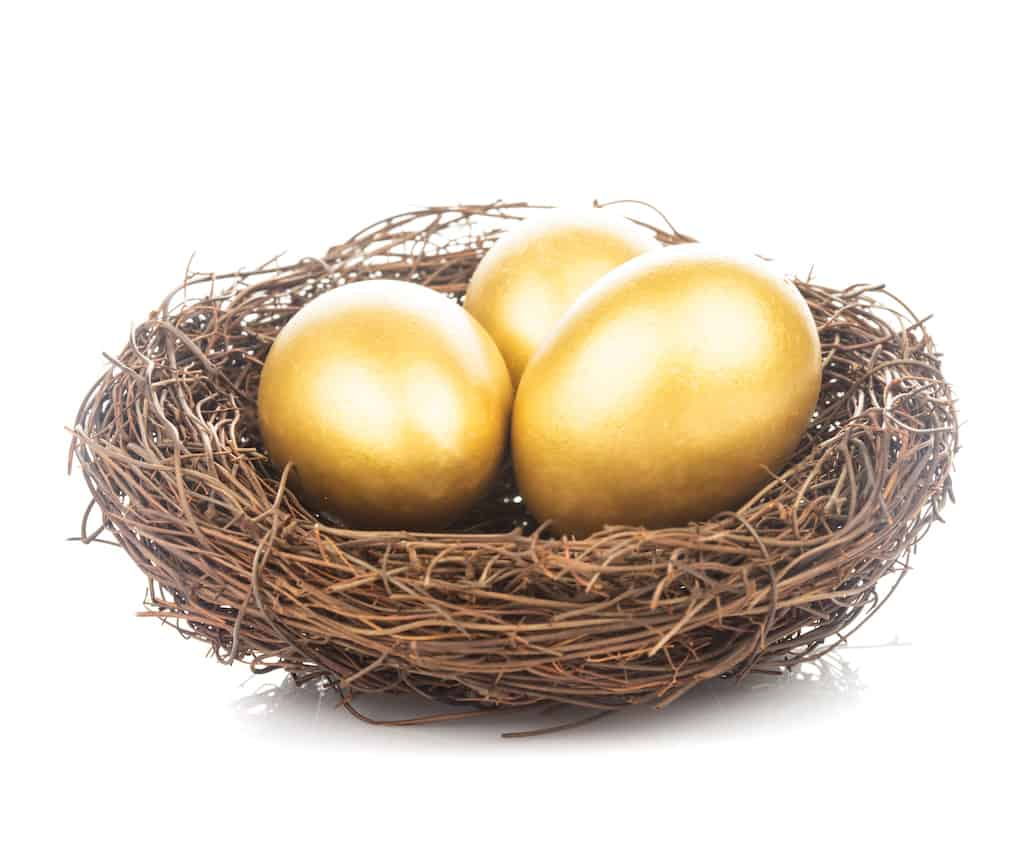 Does your nest egg give you enough money to retire?
