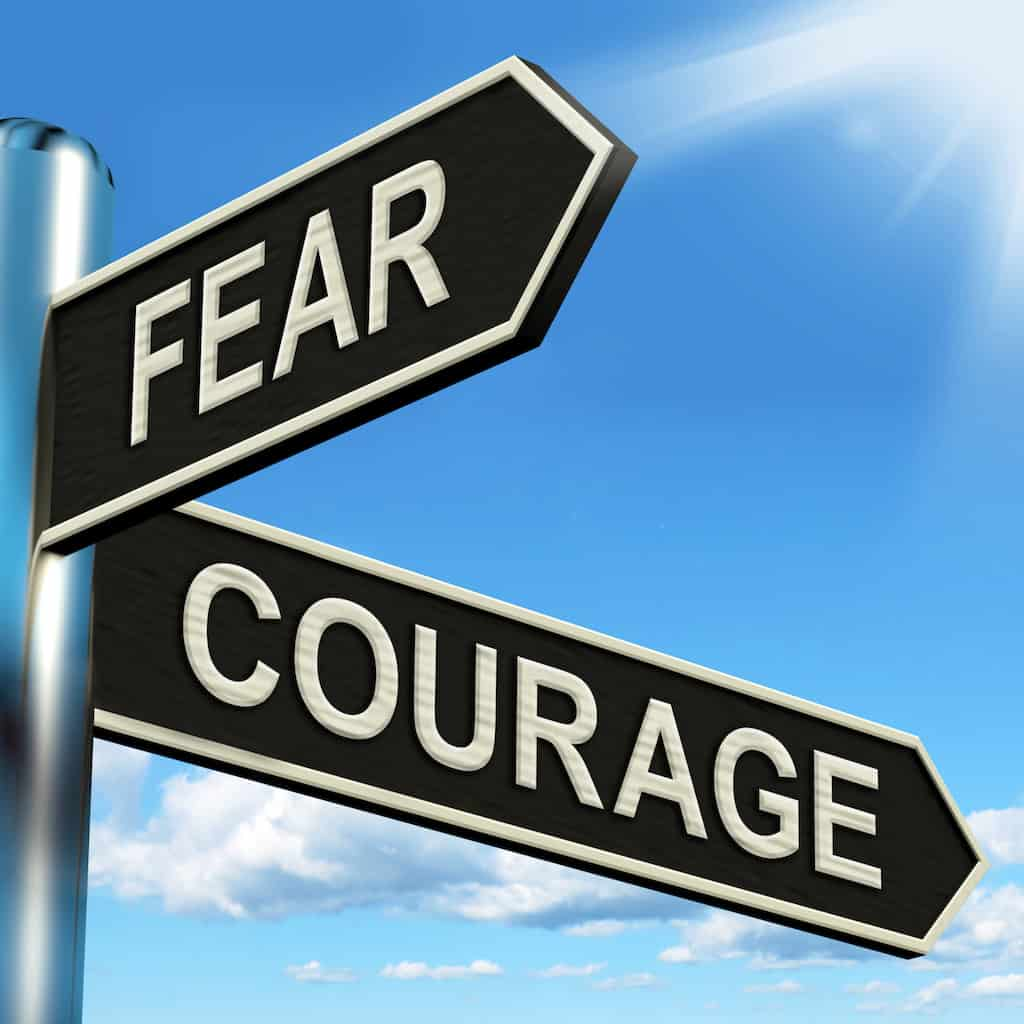 between fear, courage and wisdom