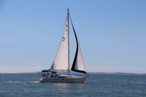 Sailing on Freycinet